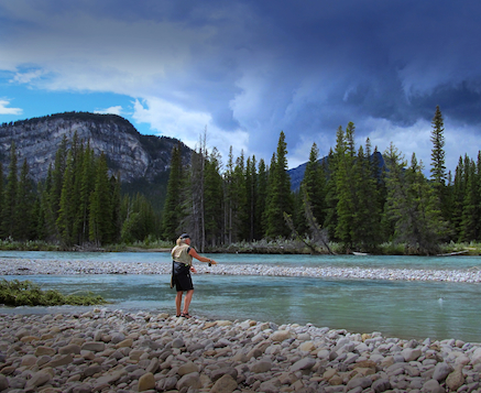 Bow_River_fly_fishing