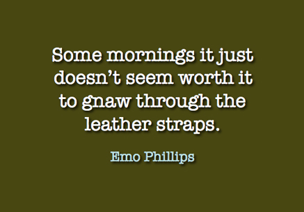 Emo_Phillips_quotation