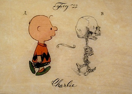 paulus_charlie_brown.jpg